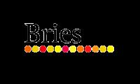 logo Beachclub Bries