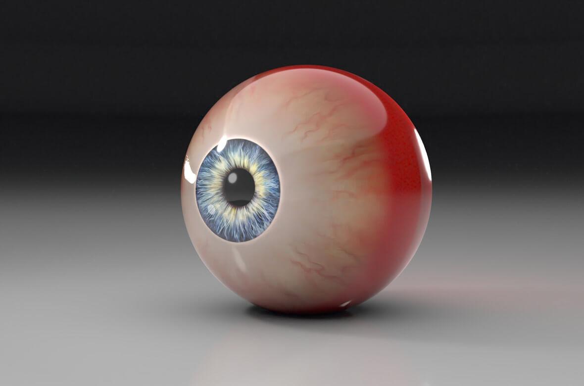 Menselijk oog | Multimediafabriek